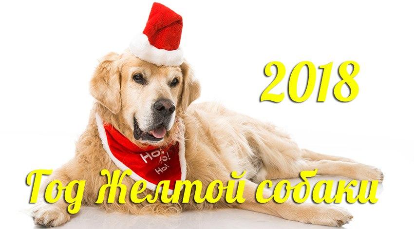 2018 год Земляной Собаки