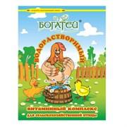 Премикс Богатей водорастворимый витаминный комплекс для сельскохозяйственной птицы, 300 г